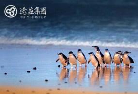 澳大利亚旅游自由行墨尔本菲利普企鹅岛一日游